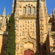 Salamanca Old Cathedral — Stock Photo