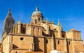 萨拉曼卡大教堂后视图 — 图库照片