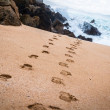 Footprints to the Beach — Stock Photo