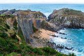 Klifowego wybrzeża — Zdjęcie stockowe