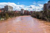 River Overflow — Stock Photo