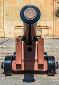Cannon Front — Stock Photo
