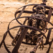 Skeleton in Cage — Stock Photo