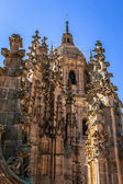 Salamanca Cathedral Tower — 图库照片