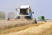 Harvester working in a wheat field — Stock Photo