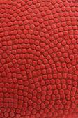 Ball texture — Foto de Stock