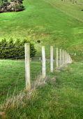Fence closeup — Stock Photo
