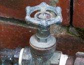 Water tap — Stock Photo