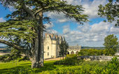 Amboise Castle, France — Stock Photo