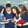 Group of students talking and holding notebooks — Stock Photo #11069438