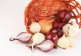 Onion vegetable closeup on white background — Stock Photo
