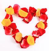 美丽的玫瑰花瓣的帧 — 图库照片