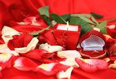 Frame of beautiful petals of roses — Stock Photo