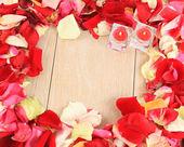 рама красивых лепестков роз — Стоковое фото