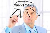 Unternehmer im zeitalter zeichnet ein diagramm. isoliert auf weißem hintergrund. — Stockfoto