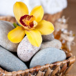 Spa theme objects — Stock Photo #13186158