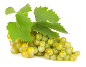 Green grapes with leaves. — Stock Photo