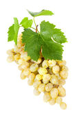 Grapes with leaves. — Stock Photo