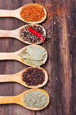 Various spices in spoons — Stock Photo