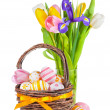 Easter eggs in a basket and spring flowers — Stock Photo #19371445