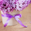 Stock Photo: Bouquet of lilac close-up