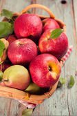 Ripe apples and pears — Stock Photo