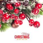 Christmas background — Stock Photo #36004981