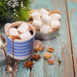 Cocoa with marshmallows — Stock Photo