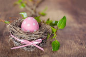 Easter egg in nest — Stockfoto