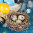 Quail eggs with feathers — Stock Photo #41122389