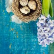 Quail's eggs in nest on blue wooden board — Stock Photo #41125591