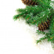 Branch of Christmas — Stock Photo #7641750