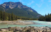 Mount Kerkeslin and the Athabaska River — Stock Photo