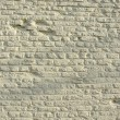 Old historical white bricks wall — Stock Photo