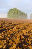 Plowed autumn farm field and morning mist — Stock Photo