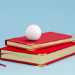 Stock Photo: Gilded business diary and golf ball