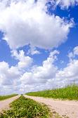 Letní štěrková cesta v zemědělských oblastech — Stock fotografie