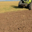 Stock Video: Tractor in summer first tillage