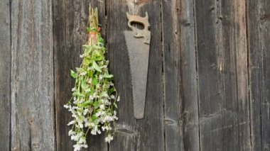 Hanging herbs bunch on old wooden wall — Stock Video