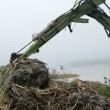 Drag clearing coasts in autumn lake and mist — Stockvideo