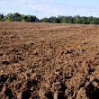 Plowed autumn farm field — Stock Photo