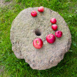 Stock Photo: Red apples on ancient millstone
