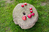 Red apples on ancient millstone — Stock Photo