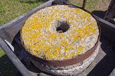 Ancient millstone with lichens — ストック写真