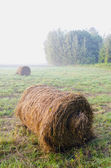 Morning landscape with rolling haystack and mist — Foto Stock