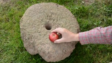 Put three summer end red apples on millstone — Stock Video