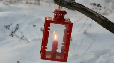 Red lamp with candle in winter garden — Stock Video