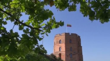 Vilnius historical Gediminas castle with flag and oak — Stock Video