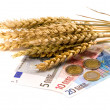 Wheat ears and euro money on white — Stock Photo