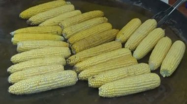 Cooking corn cobs in agriculture fair — Stock Video